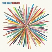 Big Flash von Wild Honey