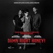 Damn Right Honey ! (Sings of Love, Loss, Life & Death) by Hillbilly Moon Explosion