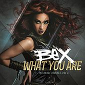 What You Are - The Dance Remixes Volume 1 by Bex
