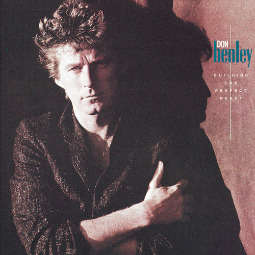 Building The Perfect Beast by Don Henley