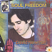 Soul Freedom by David Newman
