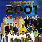 Merenhits 2001 de Various Artists