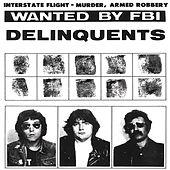 It Is What It Ain't von The Delinquents