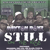 Vol. 2: Still On The Rise de Various Artists