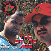 The Stone Age by Total Devastation