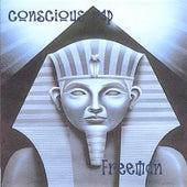 Conscious Rap de Freeman