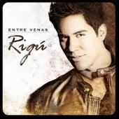Entre Venas by Rigú