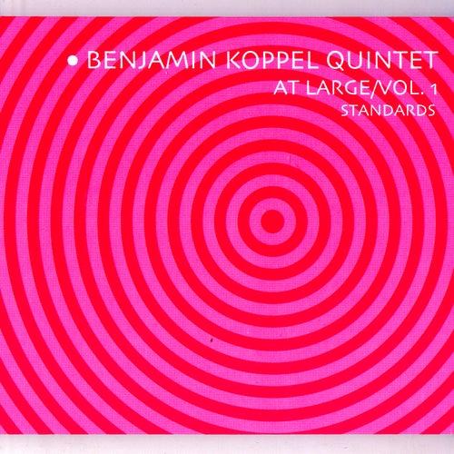 At Large/Vol. 1: Standards von Benjamin Koppel