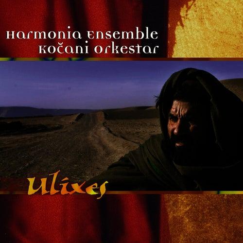 Ulixes von Kocani Orkestar