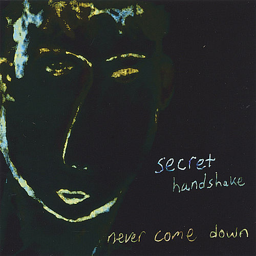 Never Come Down by The Secret Handshake