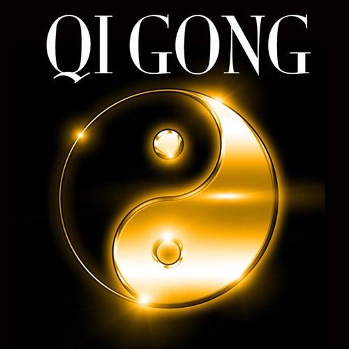 Qi Gong: Relaxing Sounds for Qi Gong Classes,    by Qi Gong