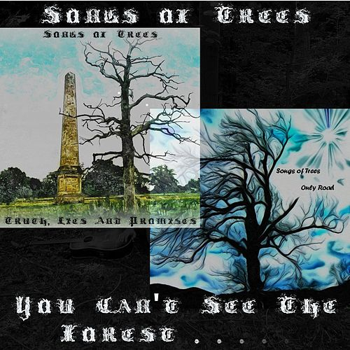 You Can't See the Forest... by Songs Of Trees