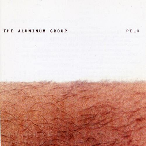 Pelo de Aluminum Group
