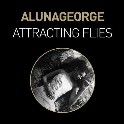 Attracting Flies (Remixes) de AlunaGeorge