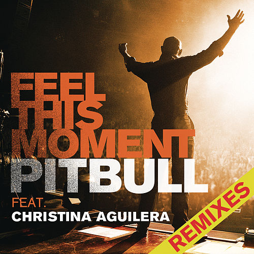 Feel This Moment Remixes de Pitbull