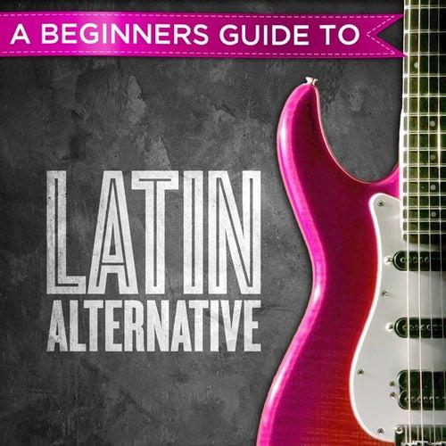 A Beginners Guide to: Latin Alternative de Various Artists