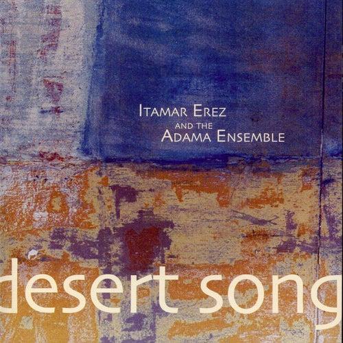 Desert Song by Itamar Erez