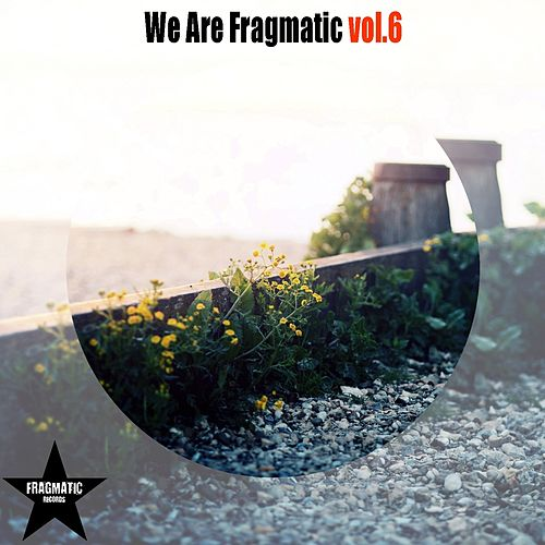 We Are Fragmatic, Vol. 6 by Various Artists