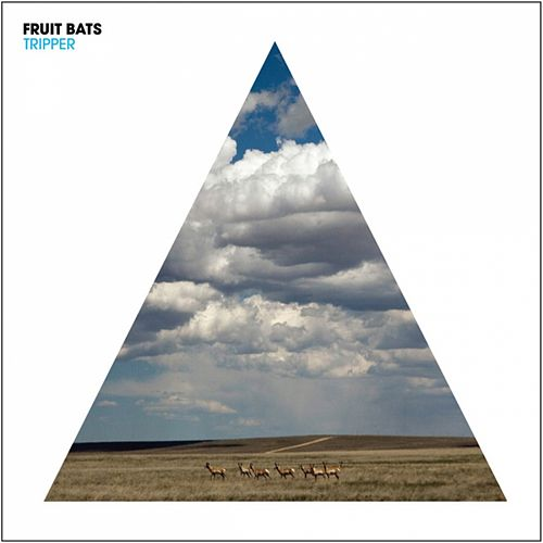 Tripper von Fruit Bats