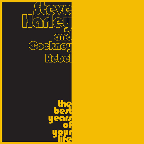 The Best Years of Your Life by Steve Harley/Cockney Rebel