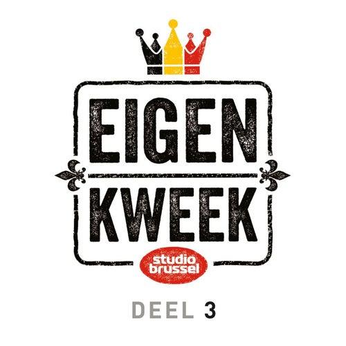 Studio Brussel Eigen Kweek Deel 3 de Various Artists