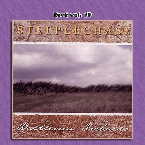 Rock Vol. 19: Steeplechase by Steeplechase