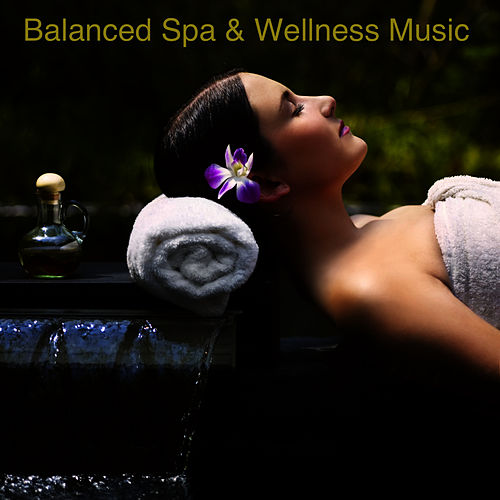 Balanced Spa & Wellness Music de Soothing Sounds