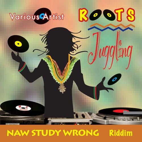 Roots Juggling de Various Artists