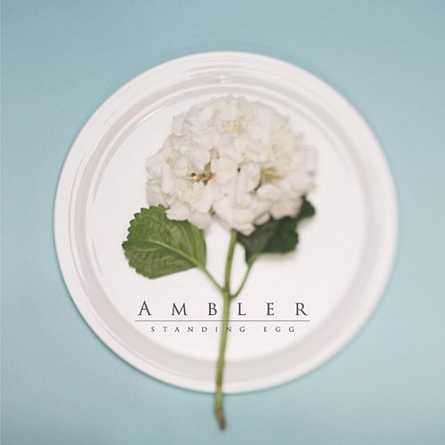 Ambler by Standing Egg