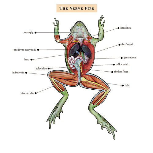 The Verve Pipe by The Verve Pipe
