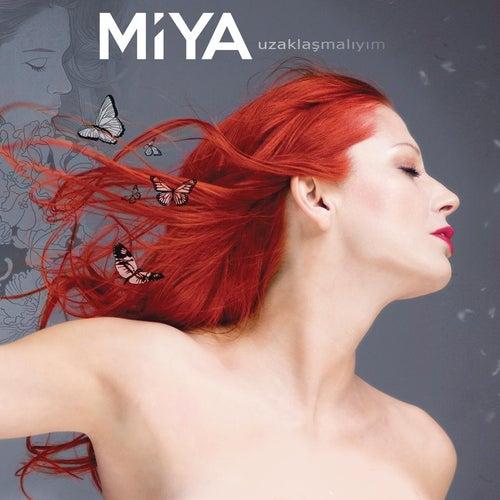 Uzaklasmaliyim de Miya