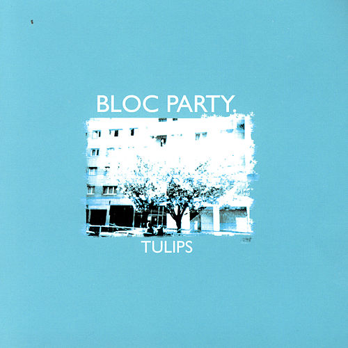 Tulips by Bloc Party