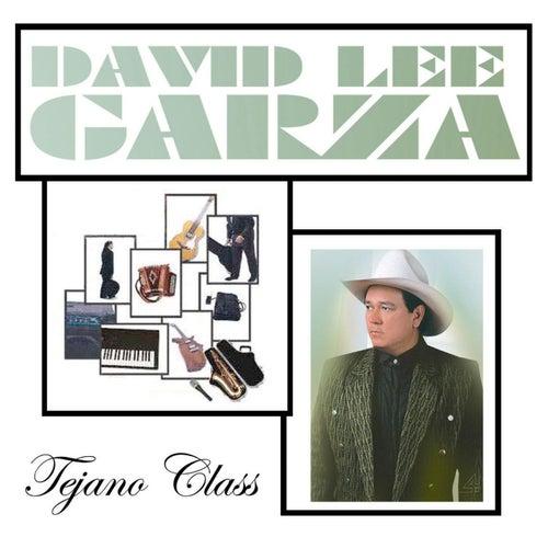 Tejano Class de David Lee Garza