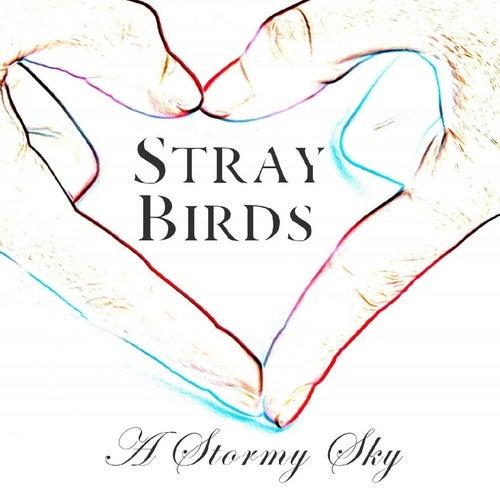 A Stormy Sky von Stray Birds
