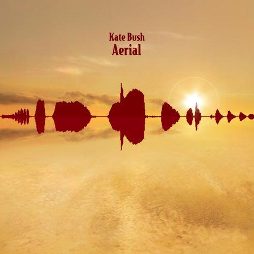 Aerial by Kate Bush