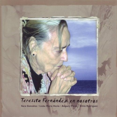 Teresita Fernández en Nosotros de Various Artists