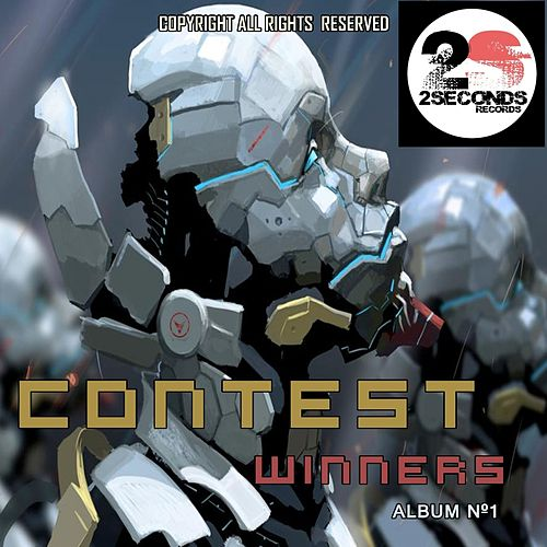 2Seconds Contest, Vol. 01 de Various Artists