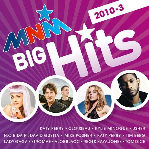 MNM Big Hits 2010/3 digital de Various Artists
