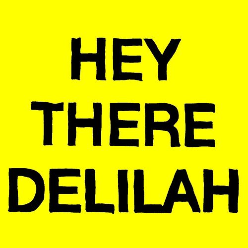 Hey There Delilah by Plain White T's