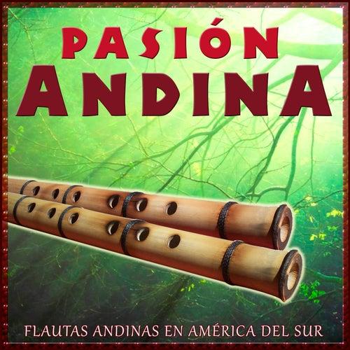 Pasión Andina Flautas Andinas en América del Sur de Hermanos Mapuche