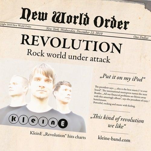 Revolution von Kleine