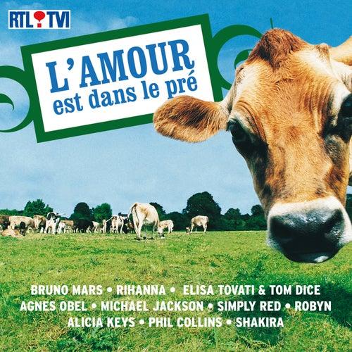 L'Amour Est Dans Le Pré de Various Artists