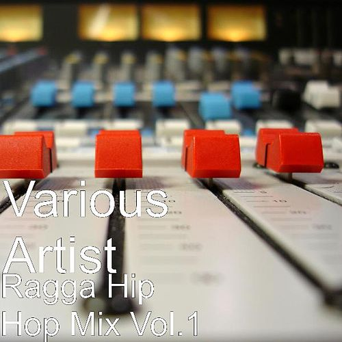 Ragga Hip Hop Mix Vol.1 by Various Artists