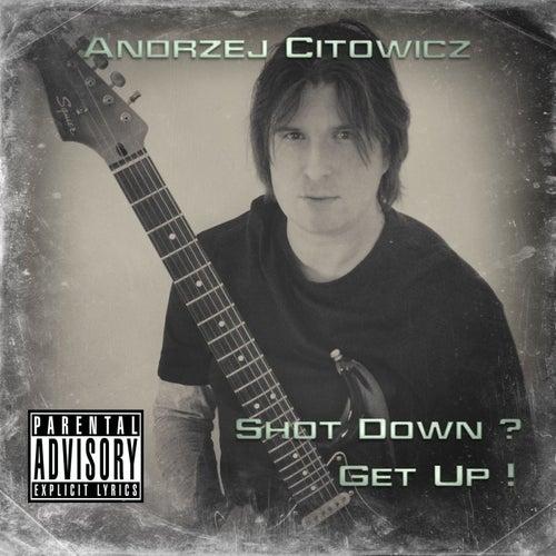 Shot Down? Get Up! de Andrzej Citowicz
