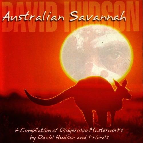 Australian Savannah by David Hudson