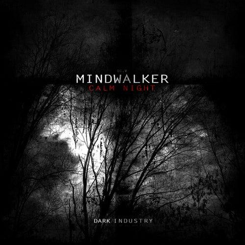 Calm Night by Mindwalker