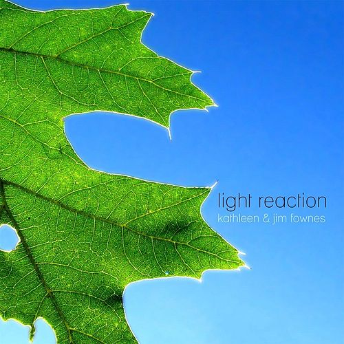 Light Reaction by Kathleen