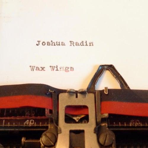 Wax Wings de Joshua Radin