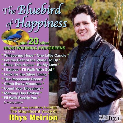 The Bluebird of Happiness de Rhys Meirion