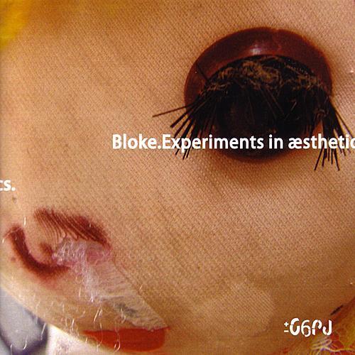 Experiments in Aesthetics de Bloke